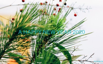 a happy new year 2020 !!!!!